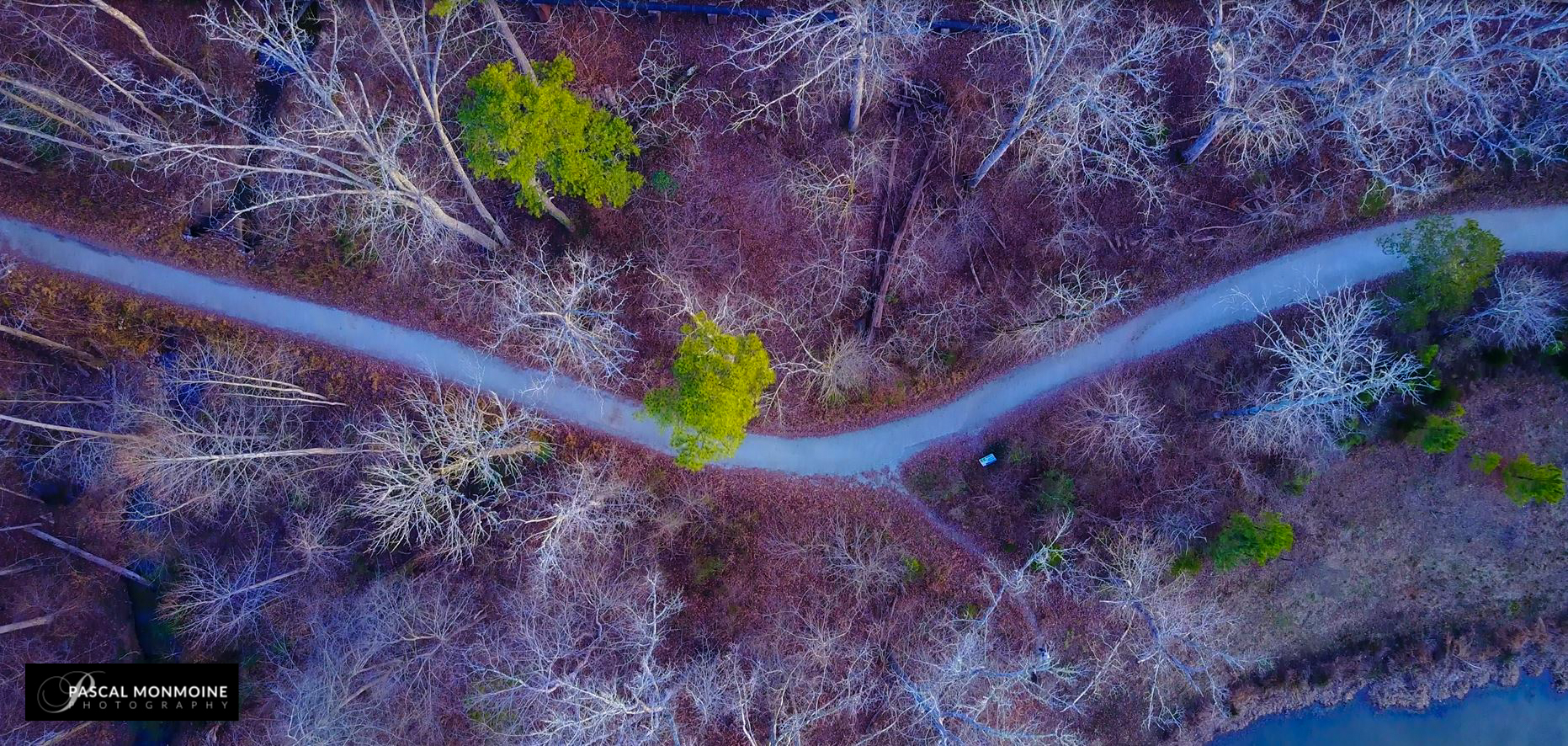 Drone photos nature Durham jan 2017 (4)